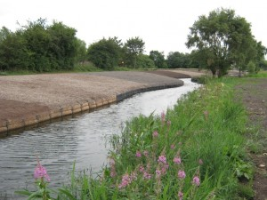 canal case study completed